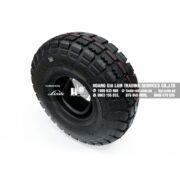 Bộ lốp bơm hơi cho bánh xe kéo điện (Part#: 0009900709)